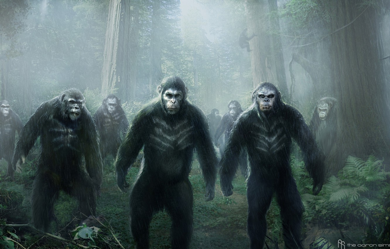 Wallpaper Dawn Of The Planet Of The Apes Planet Of The Apes The