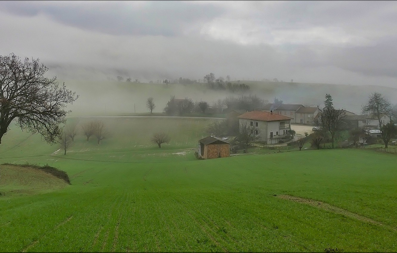 Photo wallpaper grass, trees, fog, house, morning, Italy, Campagna