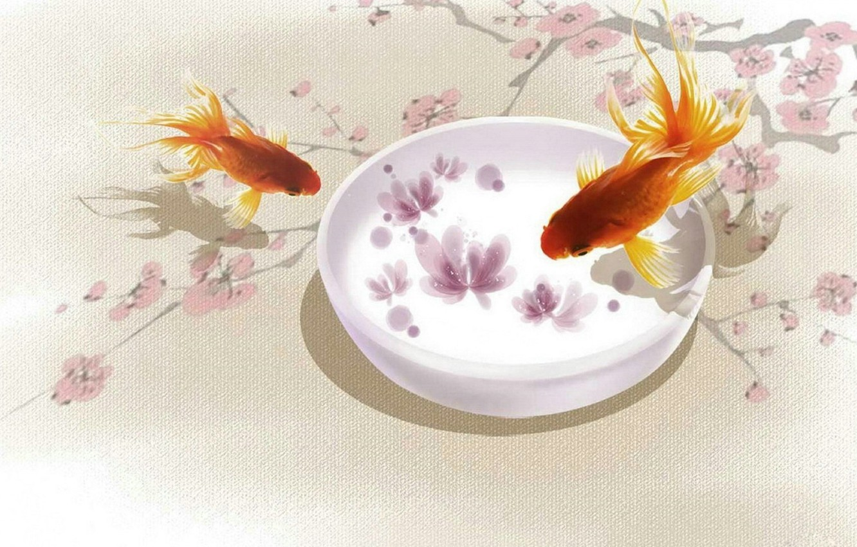 Photo wallpaper fish, Sakura, art, goldfish, branch