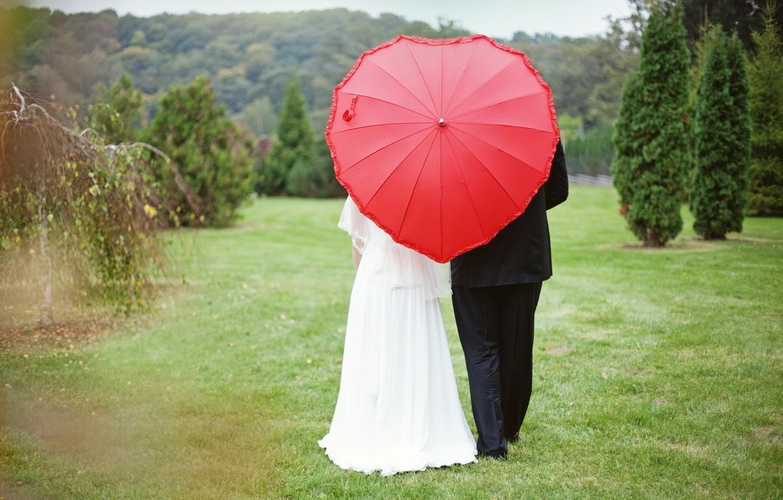 Photo wallpaper forest, heart, Umbrella, the bride, wedding, the groom