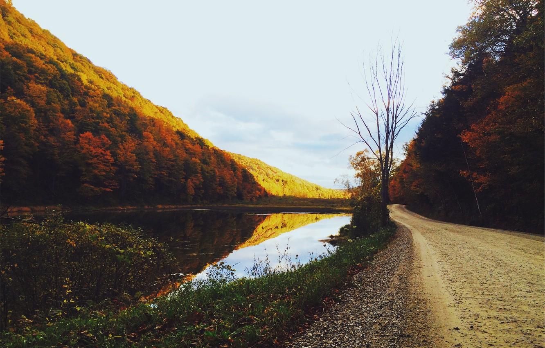 Photo wallpaper road, autumn, trees, lake, pond, gold