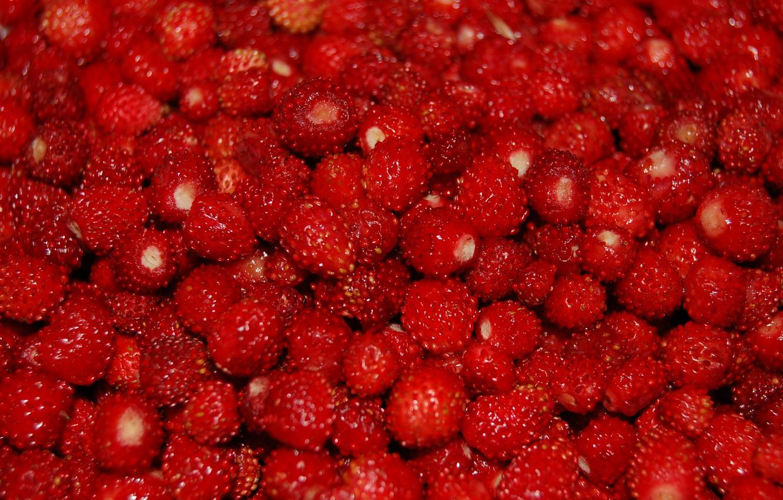 Photo wallpaper berries, strawberries, a lot