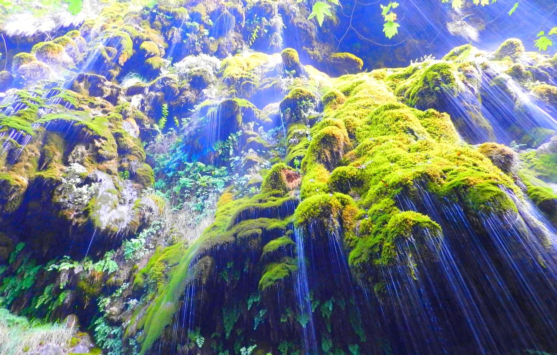 Photo wallpaper rock, Lebanon, Maple leaves, Water falls, Green moss, Saints Valley