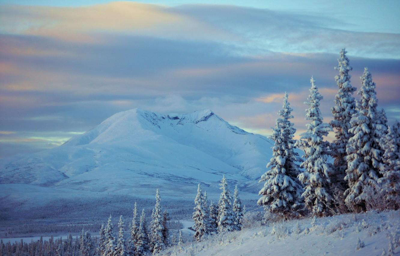 Photo wallpaper winter, snow, trees, mountains, ate, Alaska, Alaska