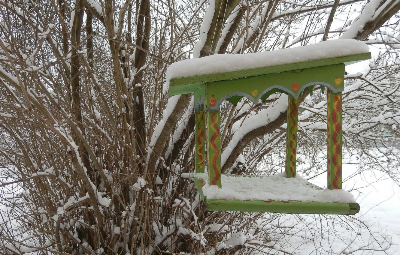 Wallpaper Winter Snow Background Widescreen Wallpaper