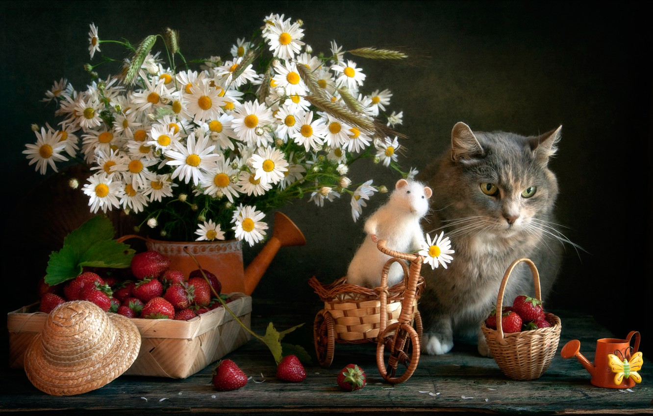 Photo wallpaper cat, flowers, berries, toy, chamomile, mouse, strawberry