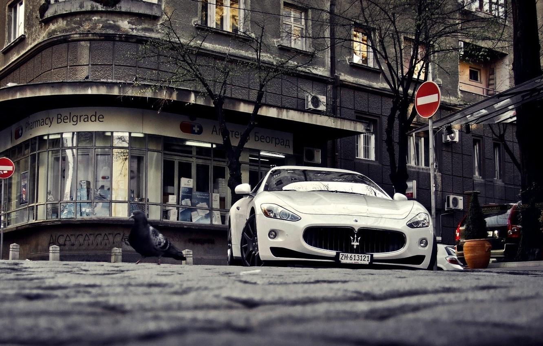 Photo wallpaper Maserati, white, sports, white, GranTurismo, Maserati