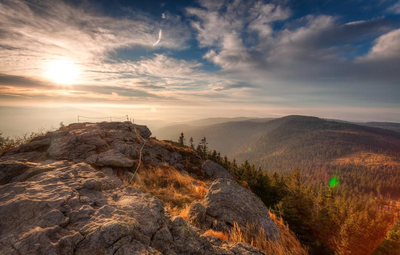 Photo wallpaper Sunrise, Forest, Nationalpark Bavarian