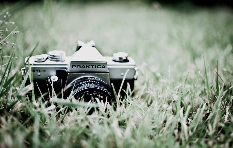Photo wallpaper greens, grass, macro, nature, photo, background, Wallpaper, the camera, lens, Praktica