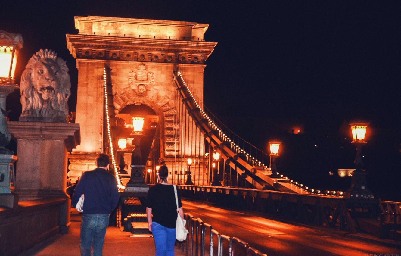 Photo wallpaper water, light, night, bridge, city, the city, lights, river, the building, lighting, Europe, Hungary, Hungary, …