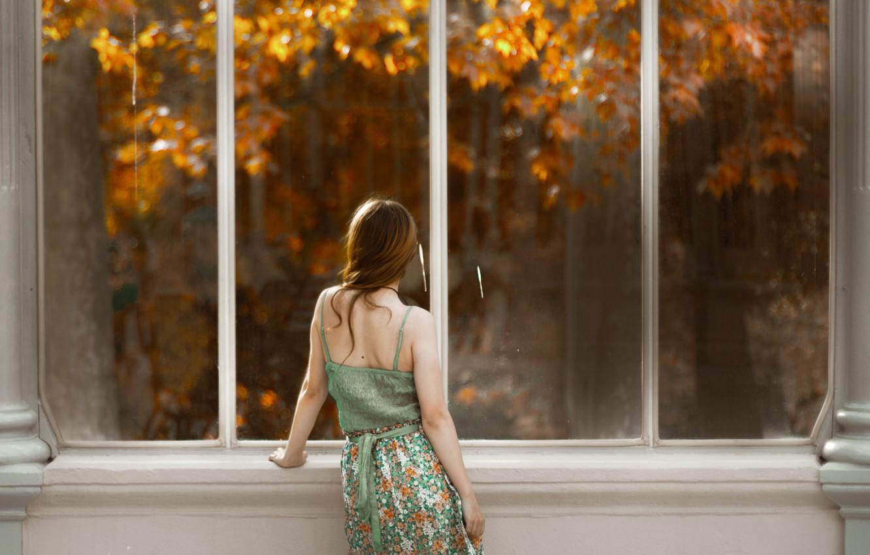 Photo wallpaper girl, back, window, red