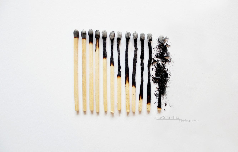 Photo wallpaper macro, matches, burnt, JONASADDICT2, Broken Down..