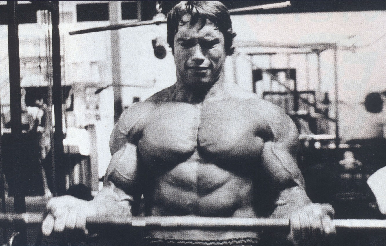 Photo wallpaper Actor, Arnold Schwarzenegger, young, kachek, Producer, Director, Arnold Schwarzenegger