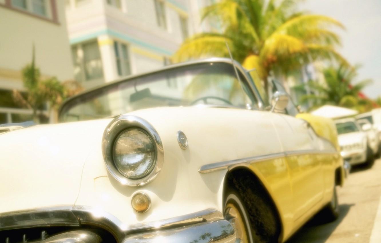 Photo wallpaper Palma, Miami, Elvis