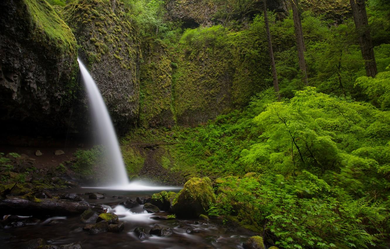Photo wallpaper nature, stones, rocks, green, waterfall, plants, nature, Waterfalls