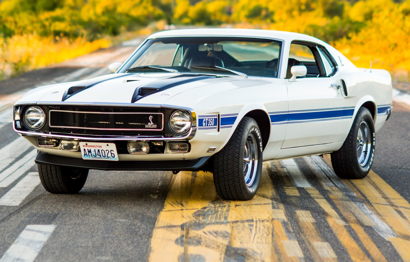 Photo wallpaper Shelby, White, 1970, GT350