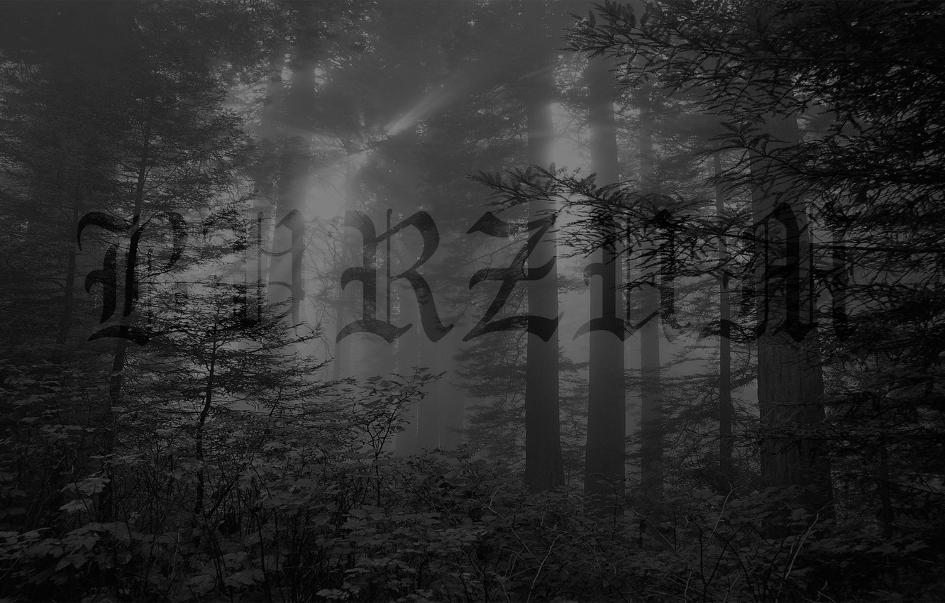 Wallpaper Metal Black Metal Ambient Burzum Images For Desktop Section Muzyka Download
