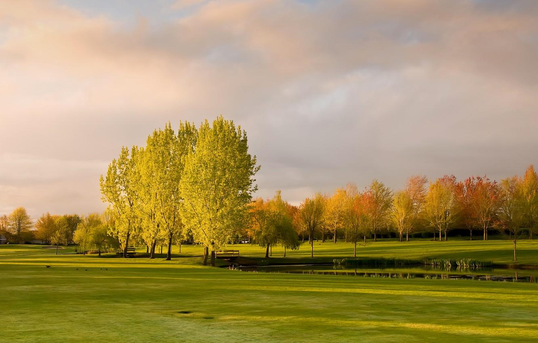 Photo wallpaper autumn, the sky, grass, clouds, trees, pond, Park, the bridge