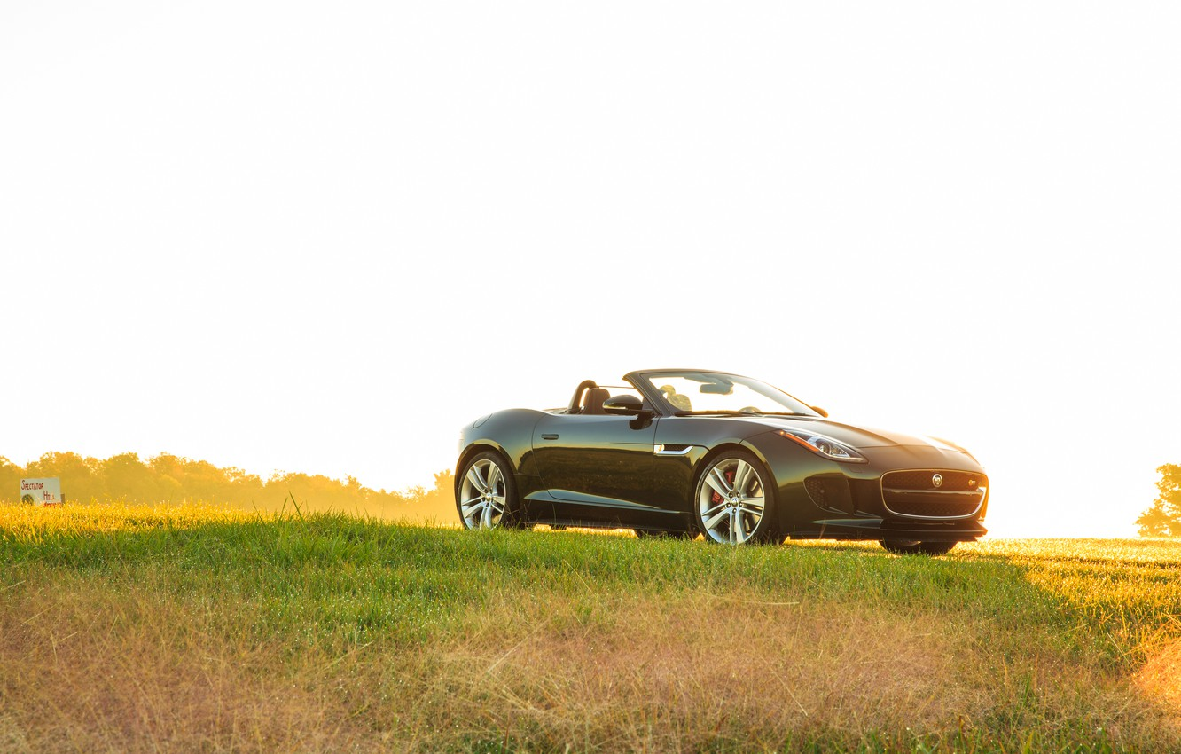 Photo wallpaper car, auto, grass, light, green, Jaguar, light, grass, Convertible, F-type, V8 S