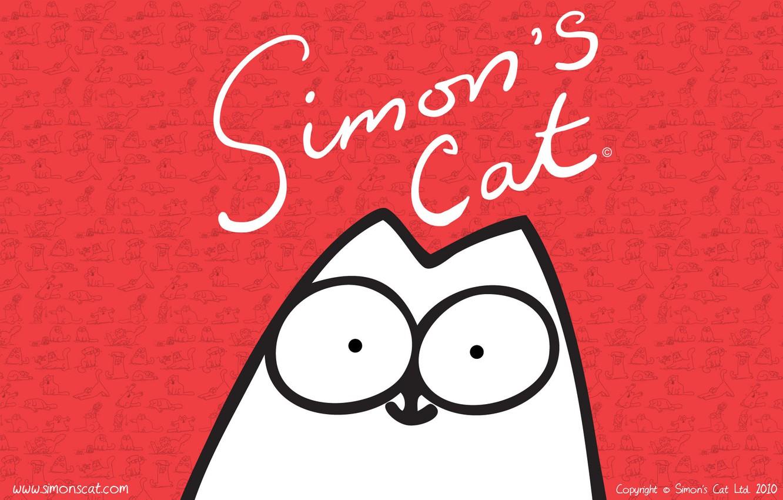 Photo wallpaper cat, cat, simon, Simon