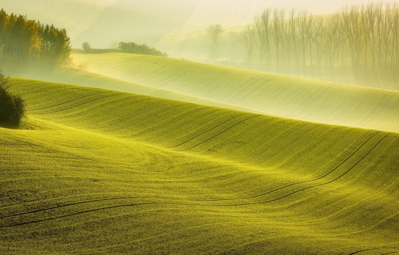 Photo wallpaper autumn, light, nature, fog, field, morning, haze