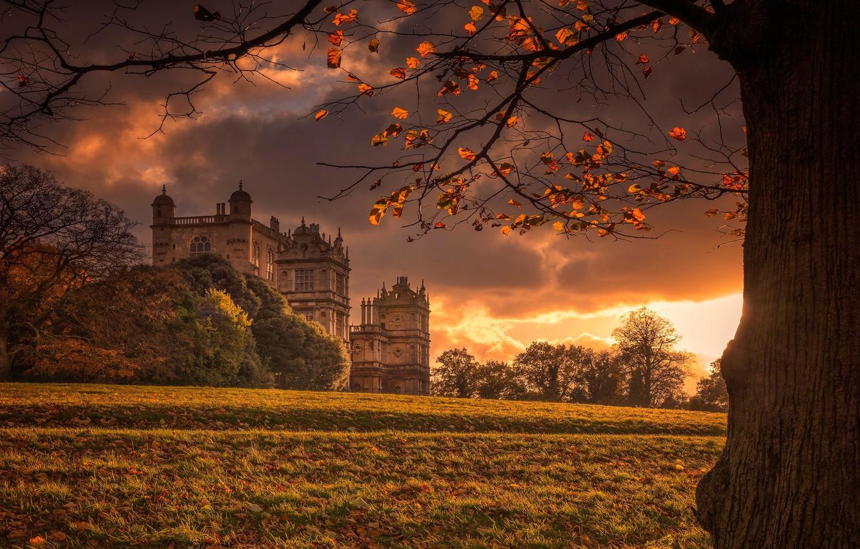 Photo wallpaper autumn, light, castle, tree, England, Palace