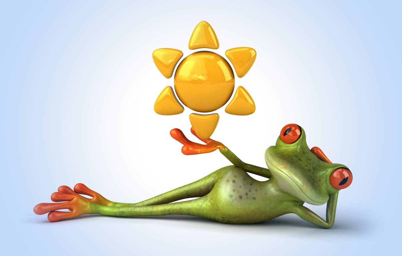 Photo wallpaper frog, frog, funny