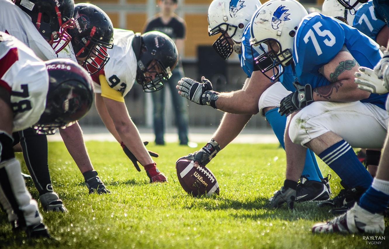 Photo wallpaper grass, the ball, team, American football, Volga kites, Tees