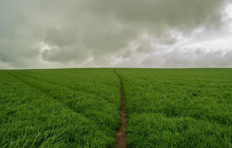 Photo wallpaper field, clouds, green, green, storm, storm, field, clouds, track, track
