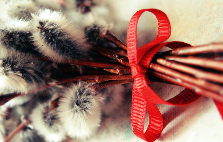 Photo wallpaper Verba, palm Sunday, a red ribbon
