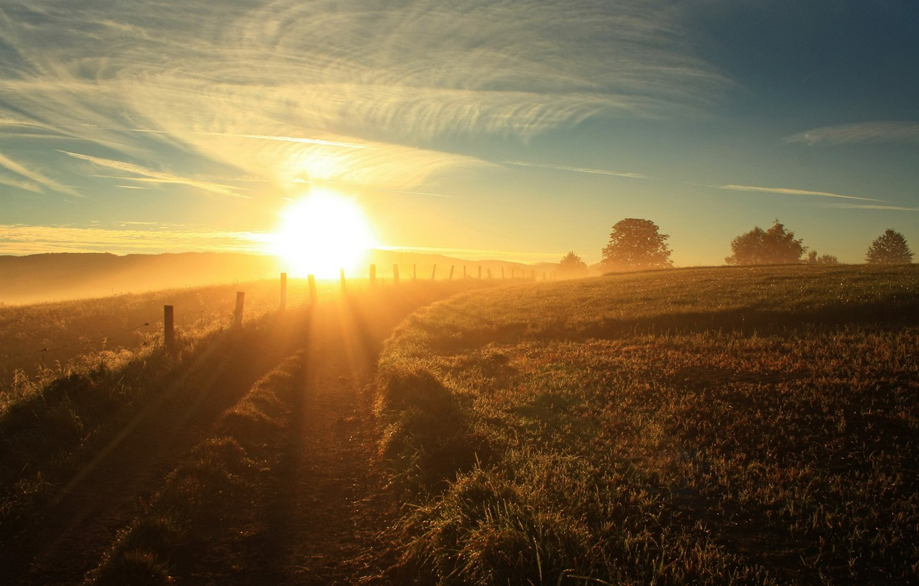 Photo wallpaper road, summer, the sky, the sun, landscape, morning