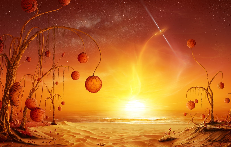 Photo wallpaper sand, sea, lights, plants, stars, fruit