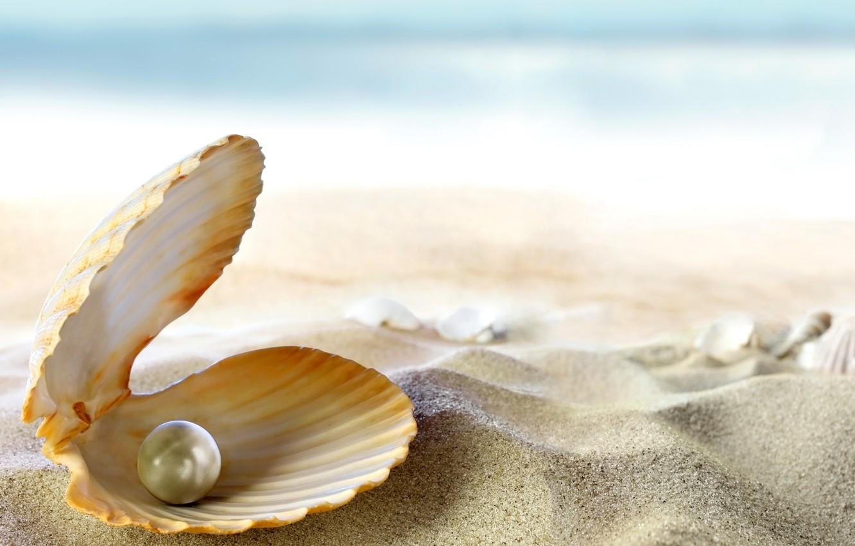 Photo wallpaper sand, sea, beach, the sun, tropics, the ocean, shell, beach, sand, seashell, pearl, perl