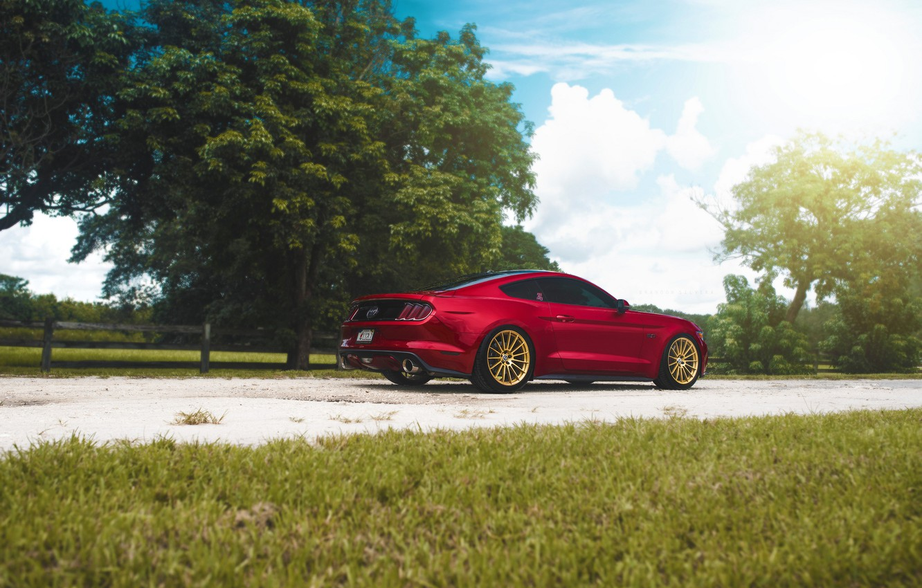 Photo wallpaper Mustang, Ford, Muscle, Light, Red, Car, Sun, Rear, 2015, Brakes