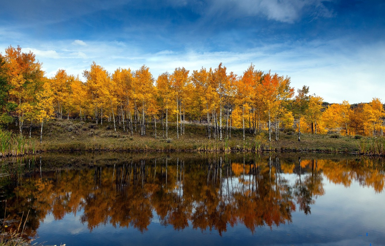 Photo wallpaper autumn, the sky, clouds, trees, lake