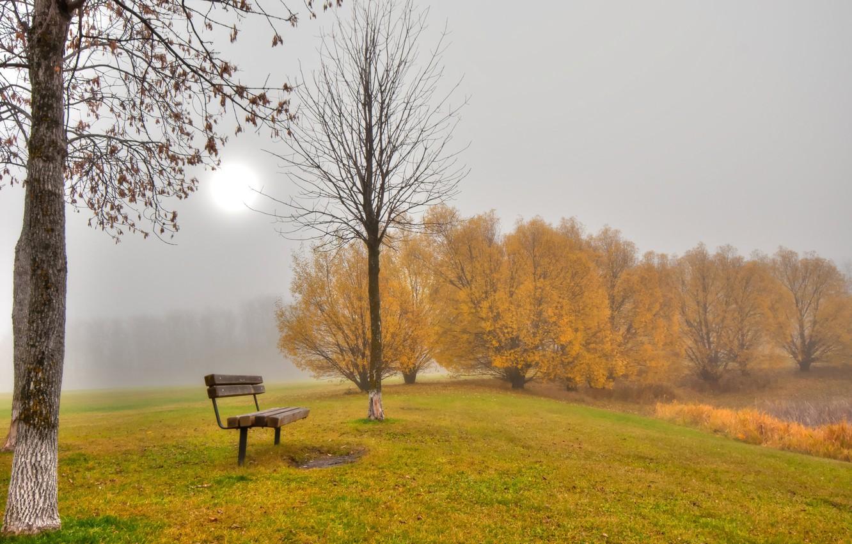 Photo wallpaper autumn, leaves, trees, fog, Park, bench