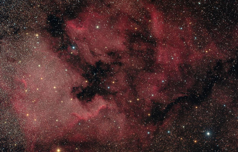 Photo wallpaper nebula, Swan, North America, in the constellation, emission