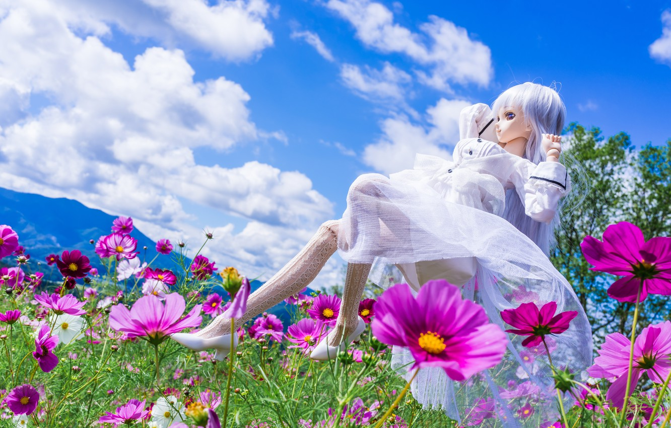Photo wallpaper clouds, flowers, mood, toy, doll, meadow, kosmeya