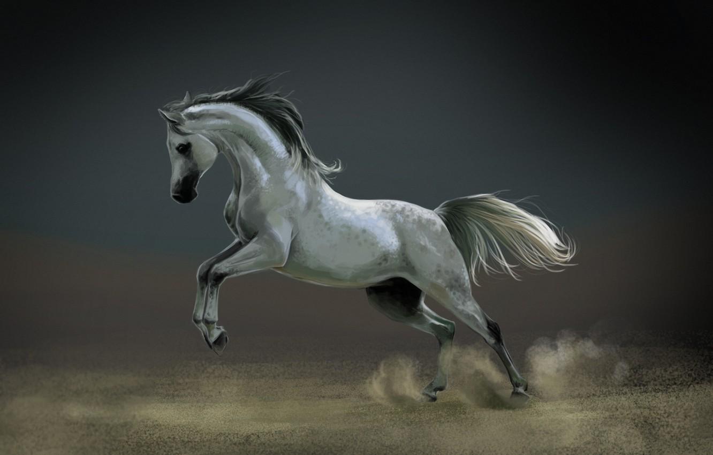 Photo wallpaper horse, horse, dust, art, white