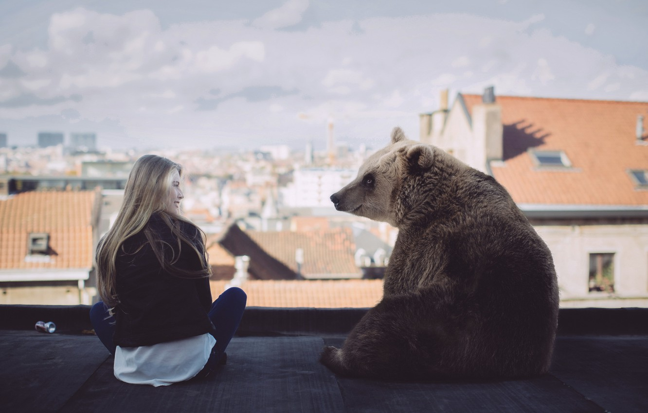 Photo wallpaper girl, the situation, bear