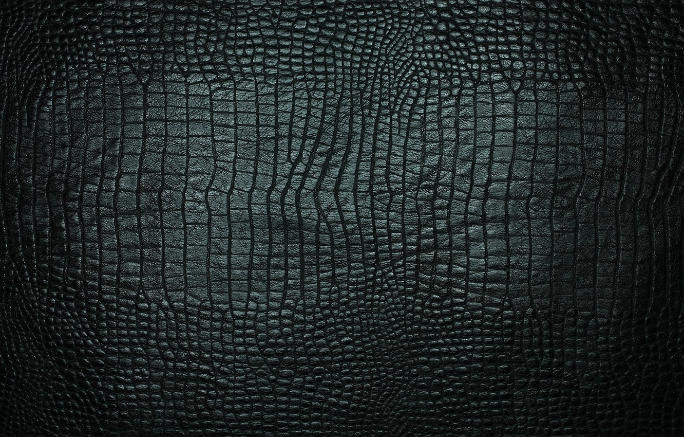 Wallpaper Texture Leather Crocodile Black Images For