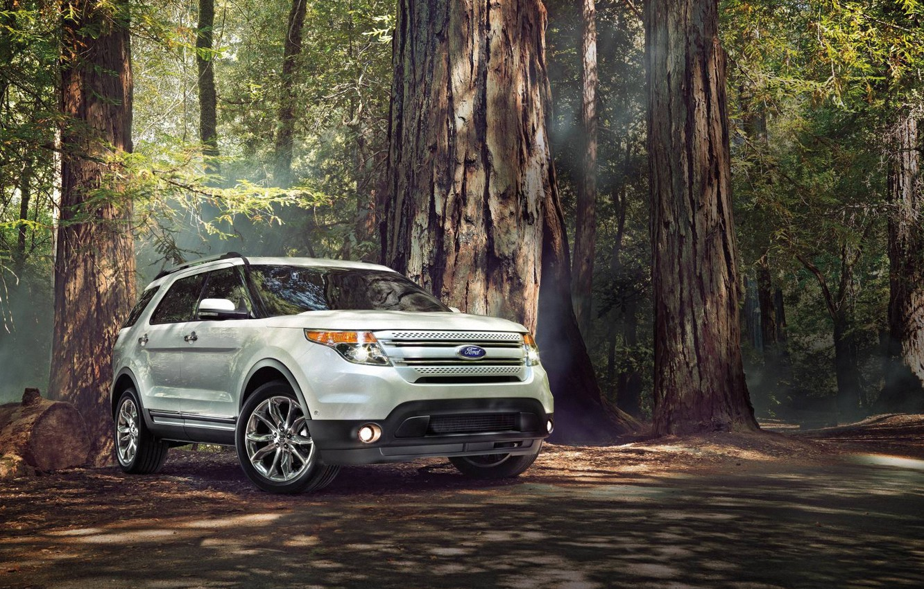 Photo wallpaper Ford, Forest, Ford, SUV, Sport, Explorer