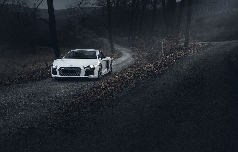 Photo wallpaper Audi, Road, V10, More, Forest, R8