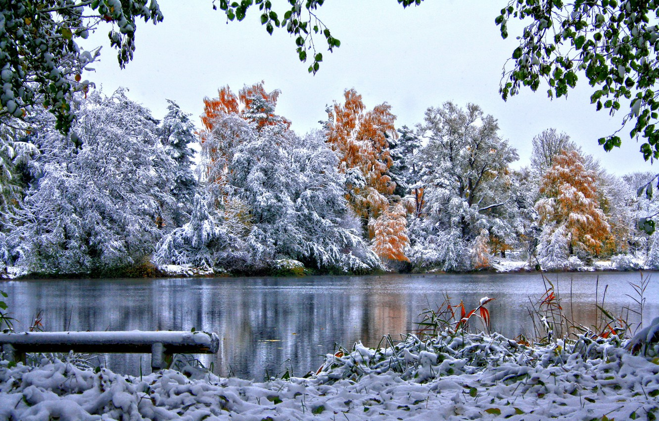 Photo wallpaper winter, the sky, grass, snow, trees, nature, river, foliage