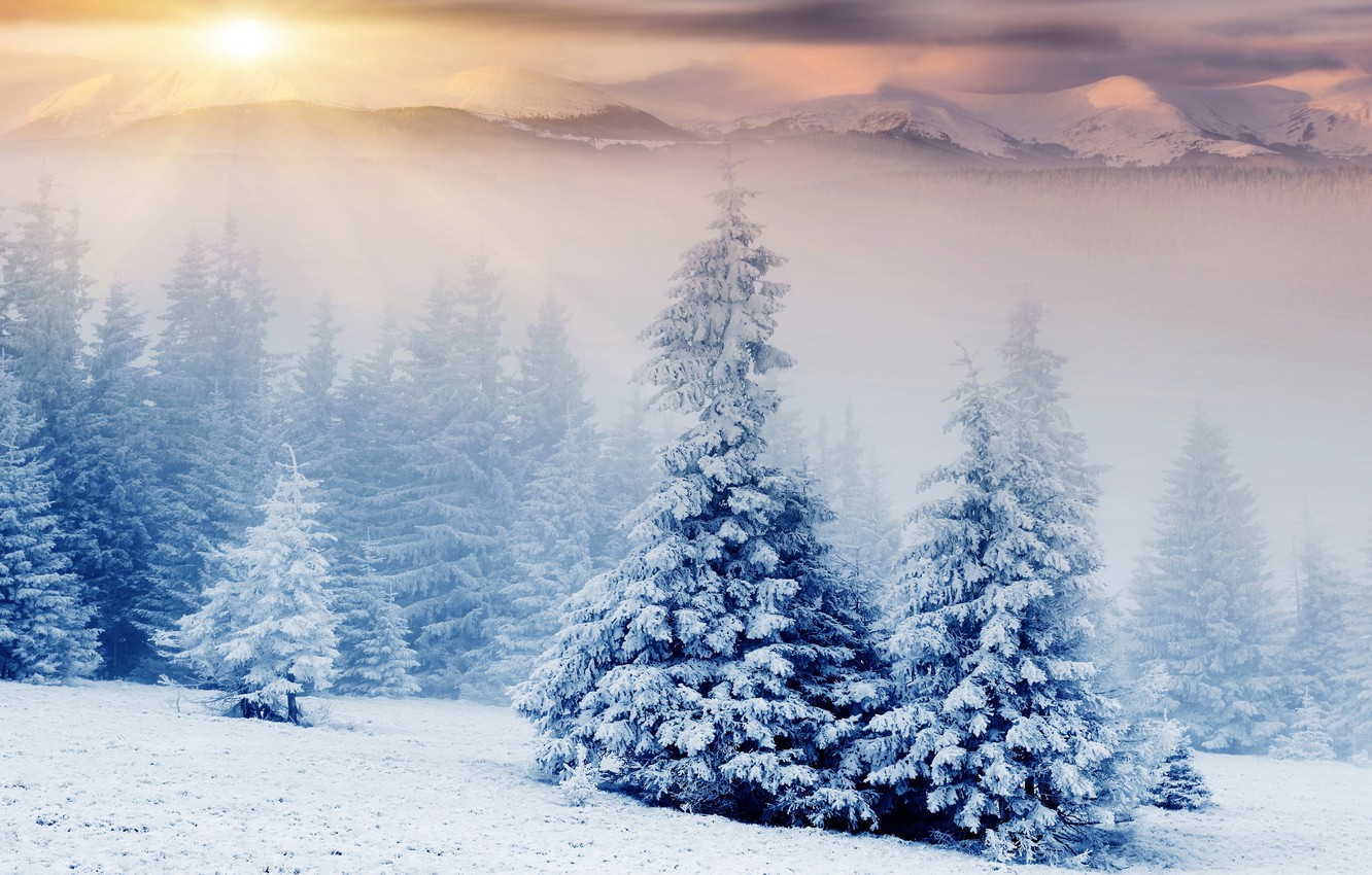 Photo wallpaper winter, forest, the sun, rays, snow, landscape, mountains, nature, fog, tops, tale, treatment, ate, herringbone, …