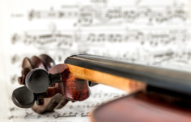 Photo wallpaper macro, background, violin