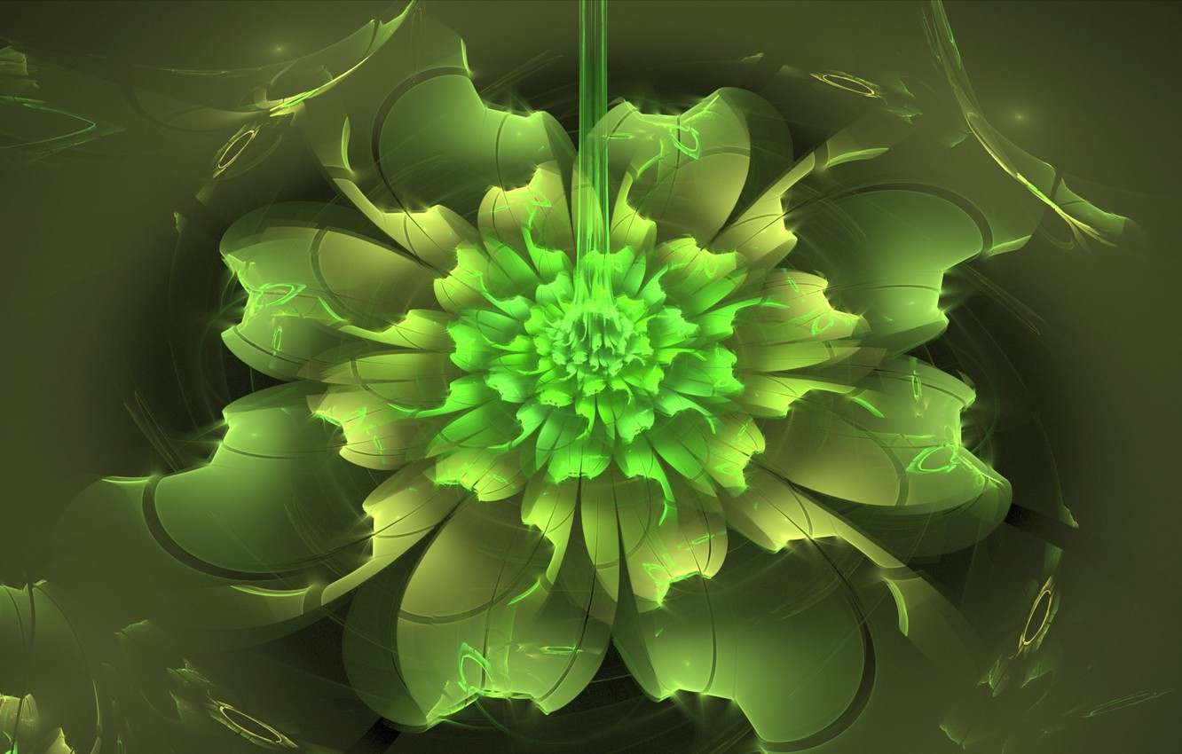 Photo wallpaper flower, abstraction, green