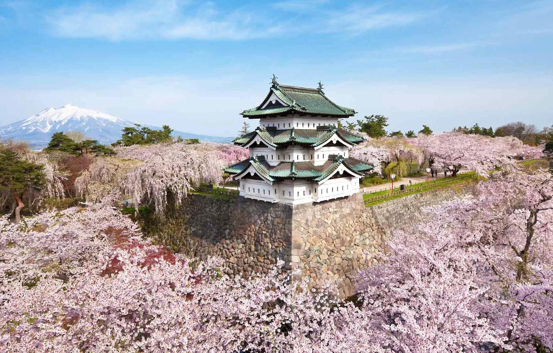 Photo wallpaper castle, mountain, spring, Japan, Sakura, flowering, Hirosaki, Aomori Prefecture, the island of Honshu