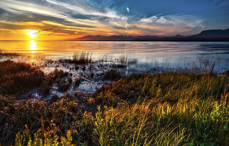 Photo wallpaper sunset, coast, Canada, Photographer IvanAndreevich, a flock of birds