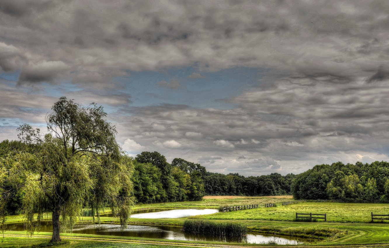 Photo wallpaper field, the sky, clouds, trees, pond, the fence, meadow
